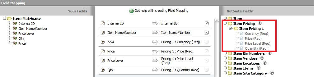 NetSuite Development Notes: Update the Price Levels on Matrix Items